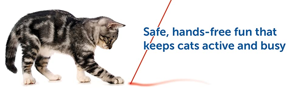 laser interactive safe cat toy petsafe hands free no setup easy