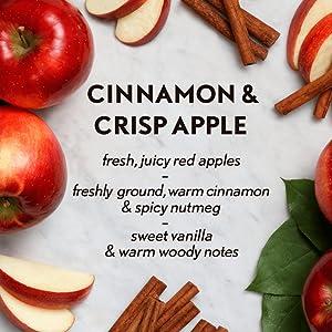 fresh juicy red apples freshly ground warm cinnamon spicy spice nutmeg sweet vanilla warm woody wood