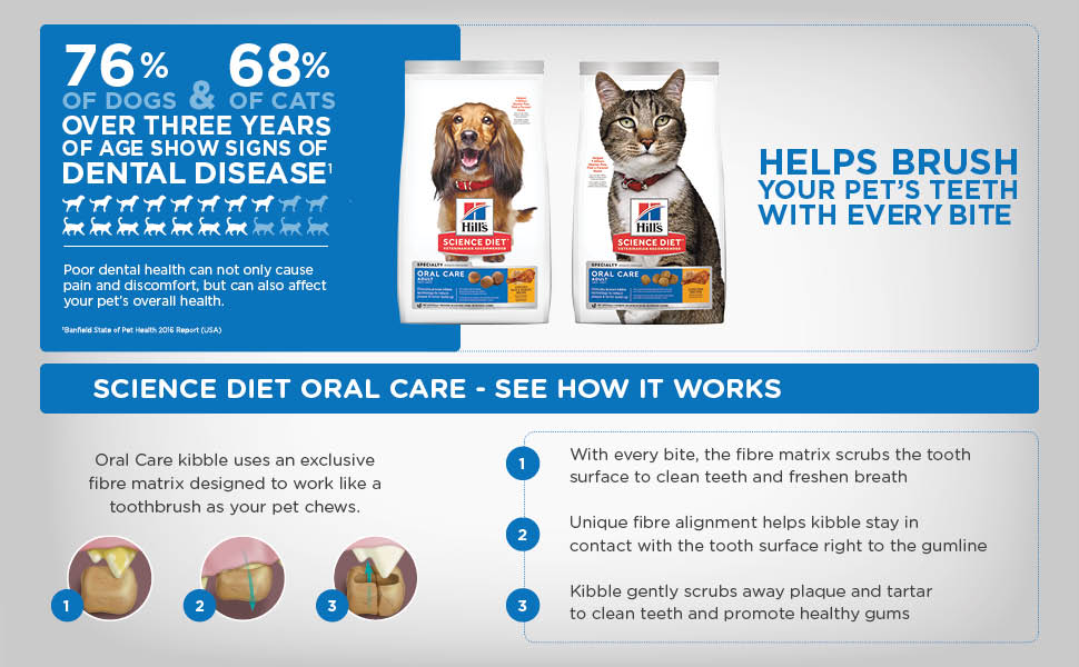Science Diet, Sciene Diet Oral Care, dental cat food, cat food, oral care for cats, oral care