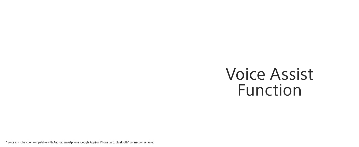 Voice assistant at your service