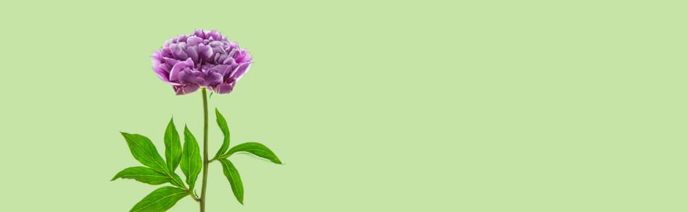 Alberto Simone, L'arte di volerti bene