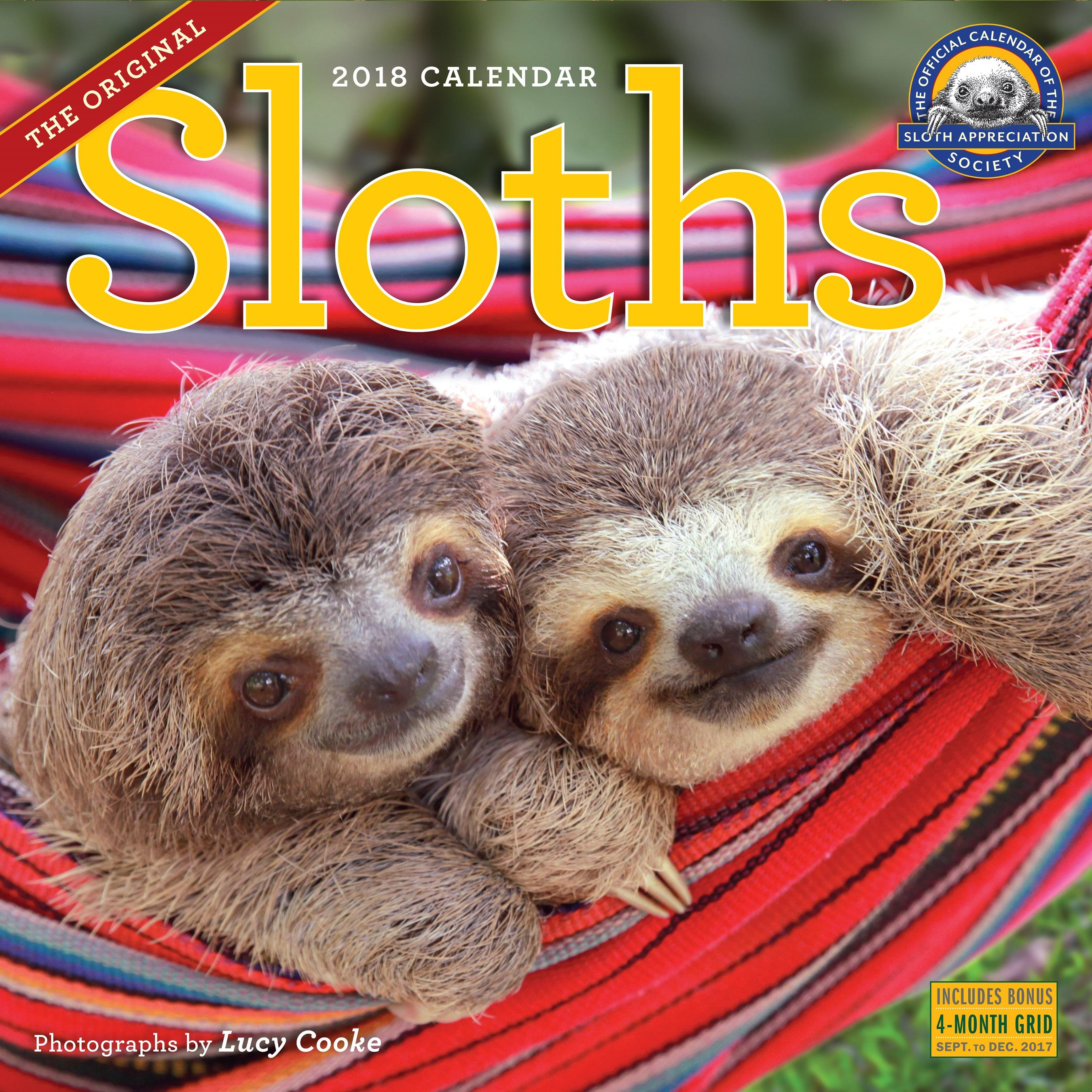 Amazon.com: Sloths Wall Calendar 2018 (9780761193364): Lucy ...