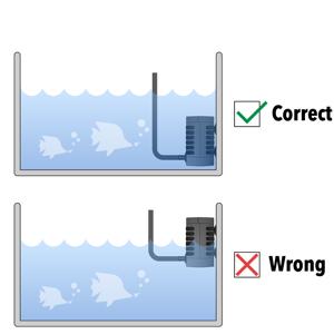 Correctamp;Wrong appliacation