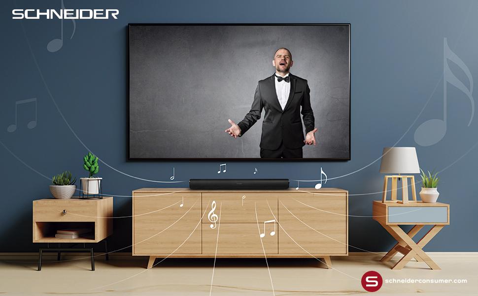 Schneider Consumer - Barra de sonido SC300SND, Soundbar 2.0, 20W (10W x 2), Bluetooth, EspeciaL para PC gaming, Negro: Schneider: Amazon.es: Electrónica