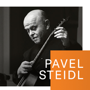 Pavel Steidl