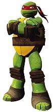 tmnt, teenage mutant ninja turtles, raphael, nickelodeon