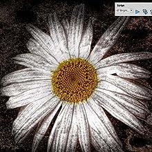psp 2019 ult flower