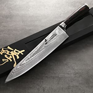 Amazon.com: Zhen japonés Acero de Damasco VG-10 67 capas ...