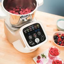 companion moulinex sorbet glace fruit HF802AA1