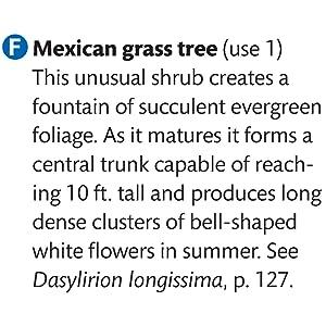 oklahoma gardening magazine, oklahoma landscapes, oklahoma landscaping, south texas