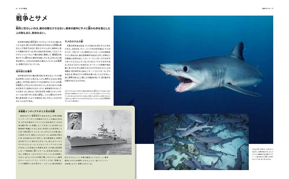 サメ図鑑1