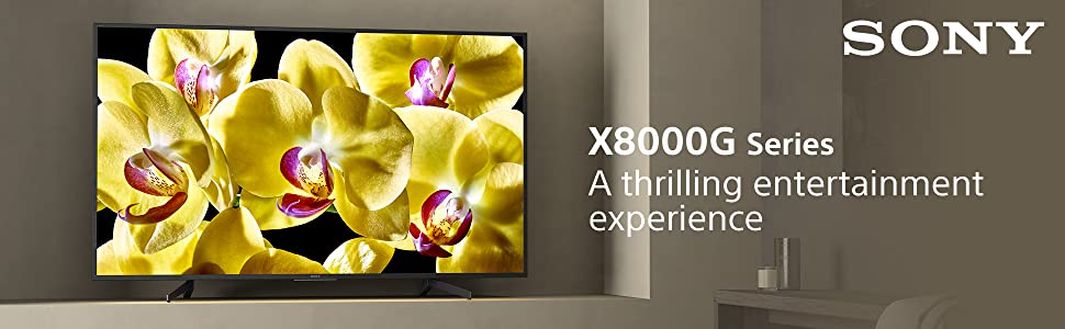 Sony X8000G Series