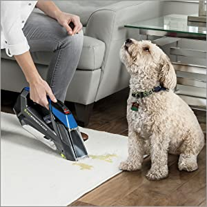 carpet cleaner, pet stain eraser, portable carpet cleaner, deep cleaner, carpet shampooer