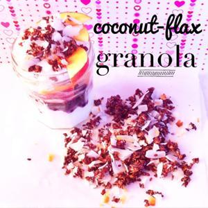 Carrington Farms Coconut Flax Granola