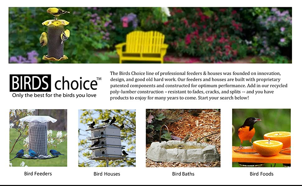 Birds Choice
