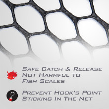 Safe Catch & Release