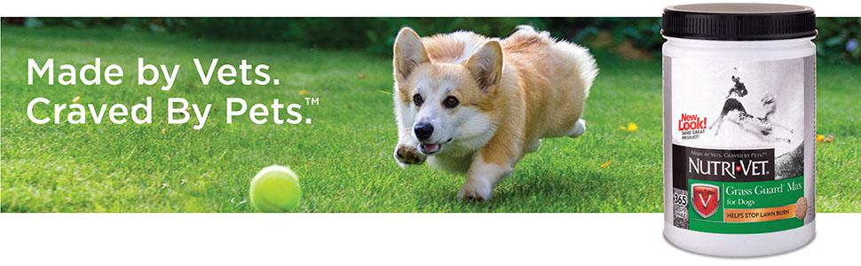 grass dog urine neutralizer; dog pee neutralizer for grass