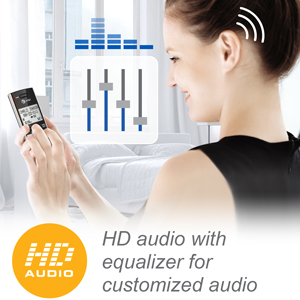 HK audio with equalizer for customized audio