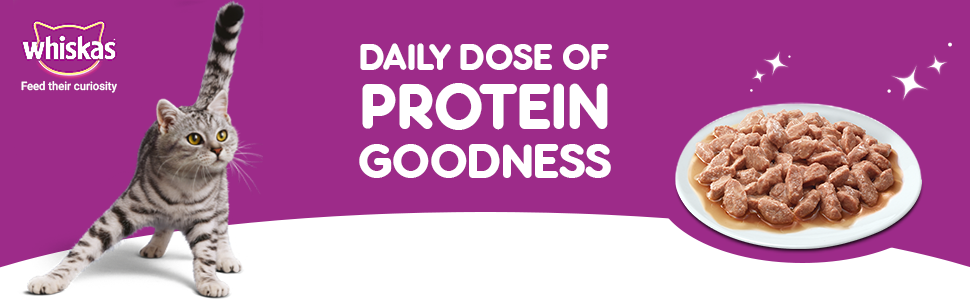 Protein goodness for my cat