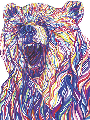 coloursoft bear