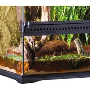 terrarios de vidrio; terrarios exoterra; reptiles