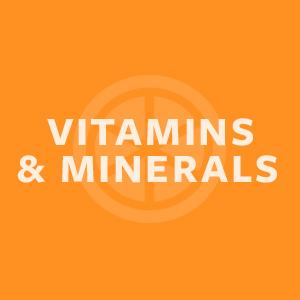 plant based protein powder vitamins and minerals