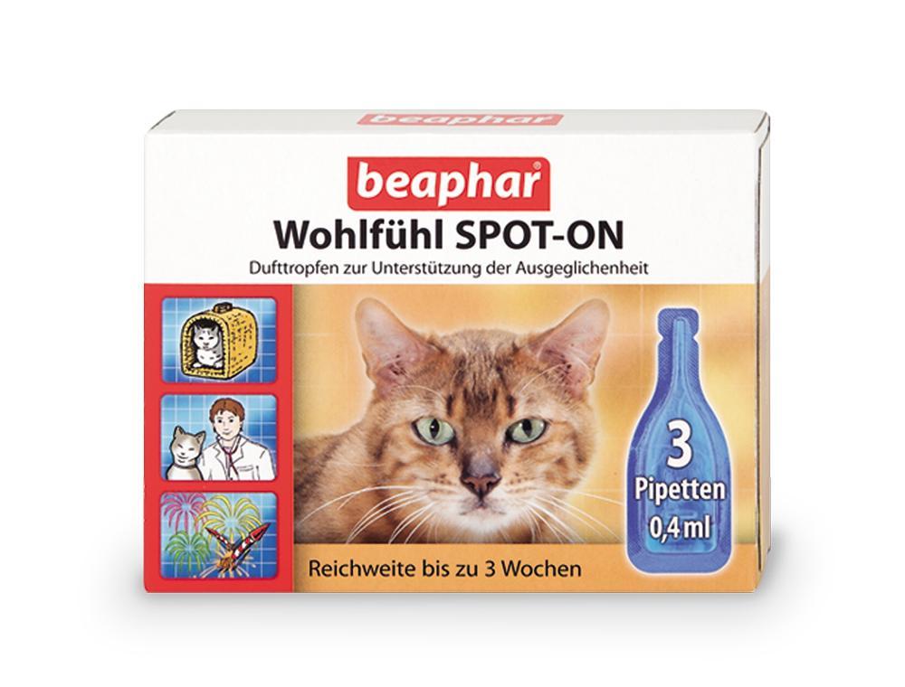 beaphar 13998 wohlf hl spot on f r katzen haustier. Black Bedroom Furniture Sets. Home Design Ideas