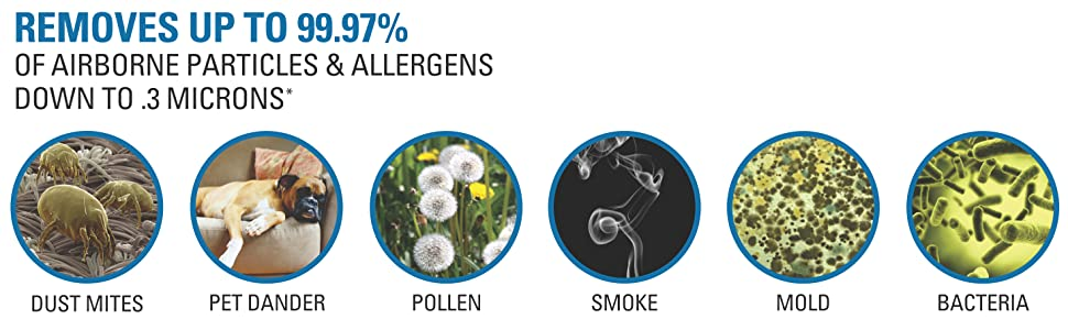 air purifiers for allergies and pets, air purifiers for home, air purifier large room, air purifiers
