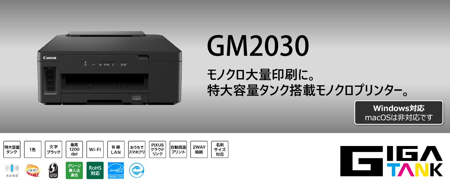 GM2030