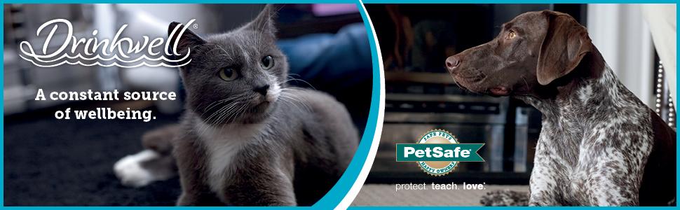 petsafe pet fountain, cat drinking fountain, dog drinking fountain