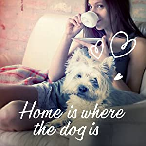 Home is where the dog is; Home-inspired Meals from the Cesar Brand; Mouthwatering main meal
