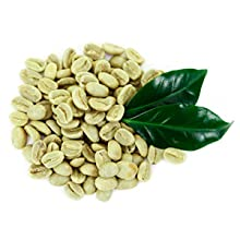 muscletech hydroxycutGREEN COFFEE BEAN EXTRACT