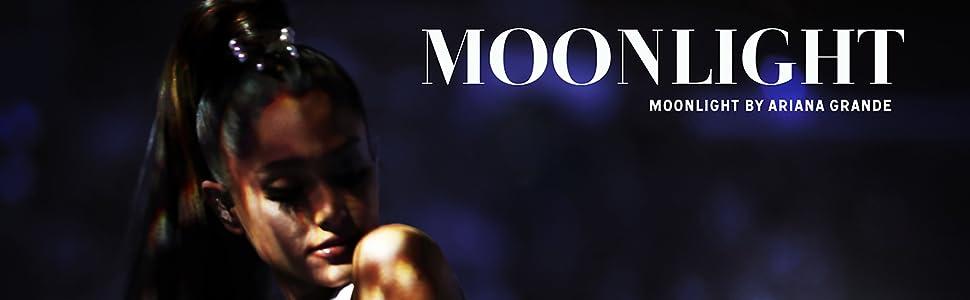 Moonlight Banner