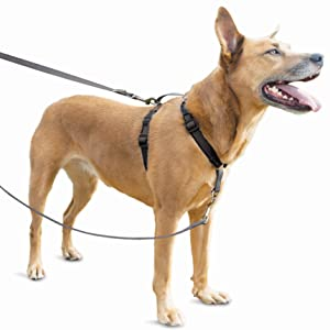 no pull, no-pull, harness, dog, front, back, attachment, clip, adjustable, easy walk, gentle leader