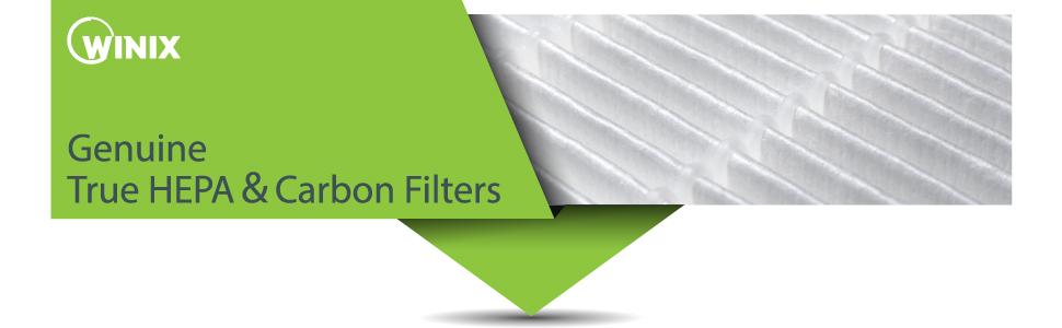 Winix 116130 Filter H Air Purifier