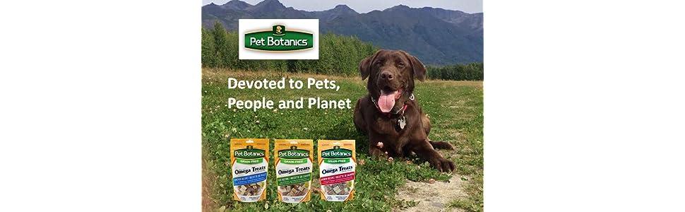 Amazon.com : Pet Botanics Healthy Omega Treat For Dogs