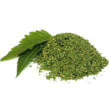Neem for the skin, neem for oily skin, neem for acne prone skin