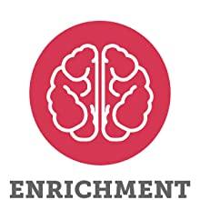 Interactive enrichment mentally stimulating brain toy