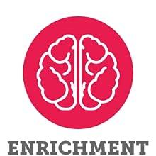 Interactive enrichment mentally stimulating brain toy