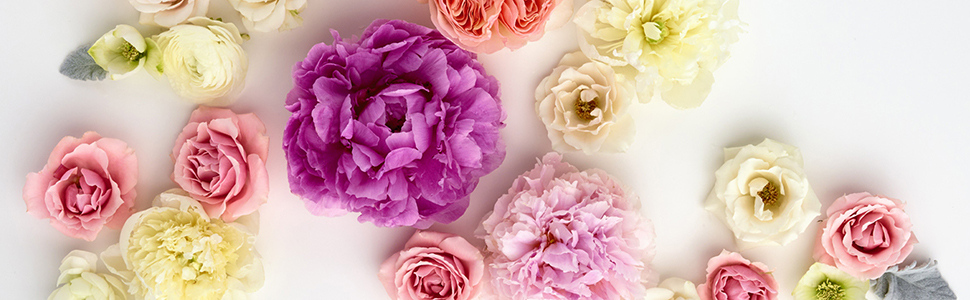 Pretty flowers in pink, peach, purple, white and cream for celebrating everyday occasions