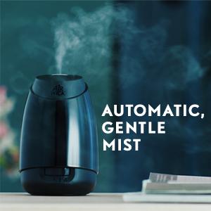 automatic gentle mist