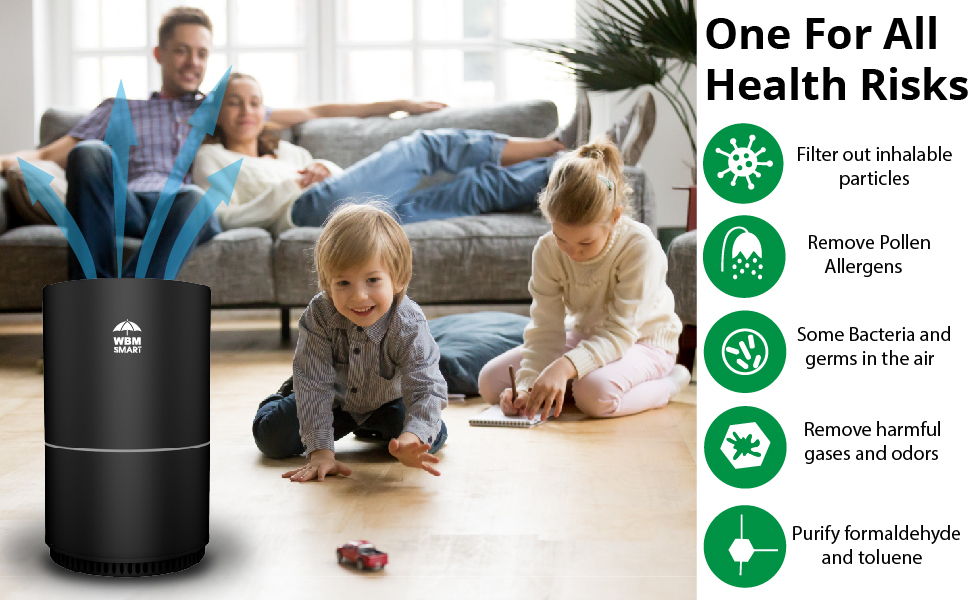 air purifier large room, air purifier filters, Filters Allergies, Pets, Pollen, Smoke, Dust