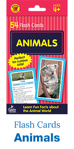 animals flash cards