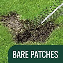 EverGreen Multi Purpose Lawn Seed Fixes Bare Grass Patches