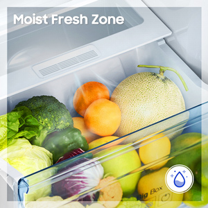 Moist fresh Zone
