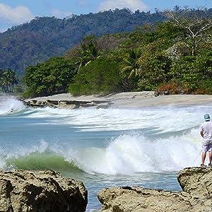costa rica, beach, surf, fish, tropical