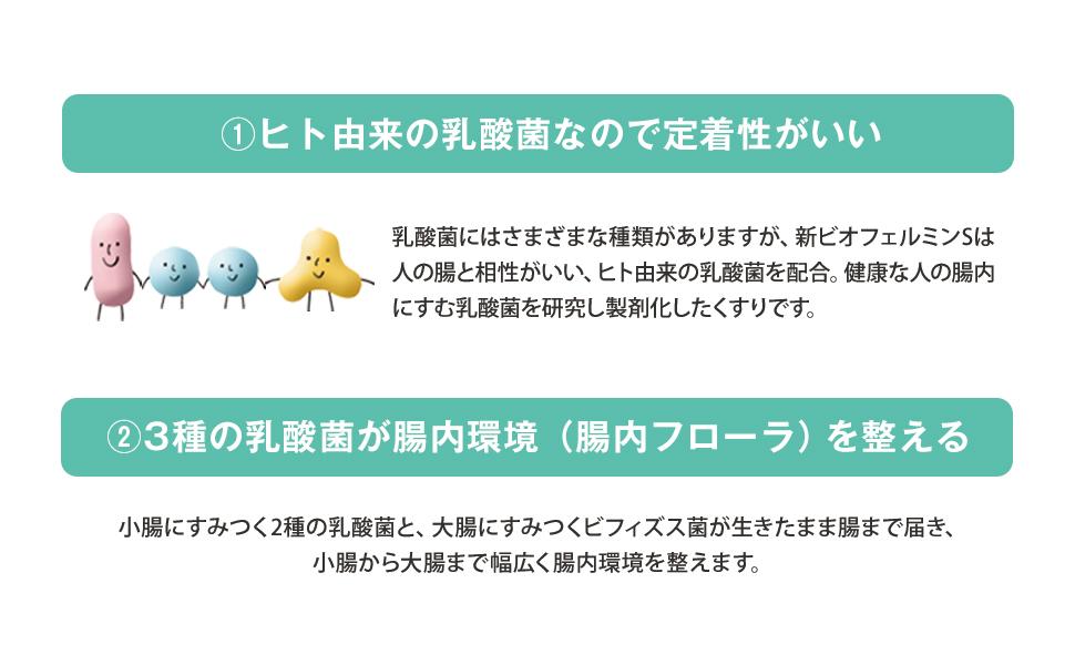 乳酸菌/腸内フローラ