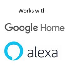 google home, alexa