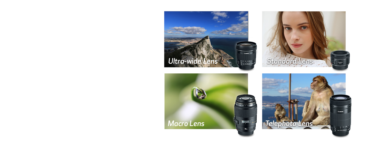Explore Your Creativity with EF Lenses