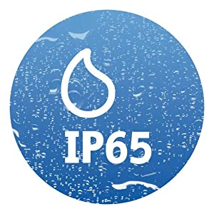 IP65.